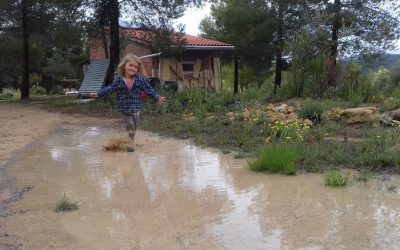 8 Golden Rules for Tiny House Living with Kids